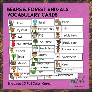 Bear Vocabulary Word Wall Cards (set of 30) - Full Color Version - Version #2
