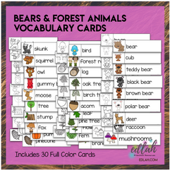 Bears Vocabulary Word Wall Cards (set of 30) - BUNDLE - Version #2