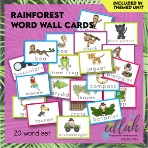 Rainforest Vocabulary Word Wall Cards (set of 20) - Full Color -Version#1