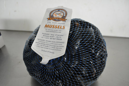 Farm Mussel PEI