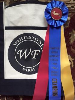 Whitestone Farm IEA