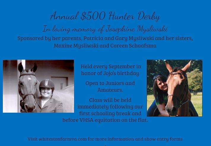 Josephine Mysliwski Hunter Derby at Whitestone Farm