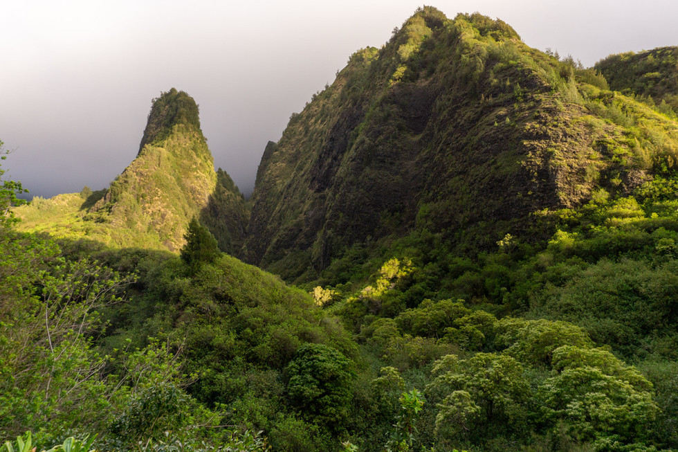 IAO TABLELAND TRAIL--MAUI