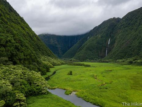 WAIMANU VALLEY via the MULIWAI TRAIL--BIG ISLAND