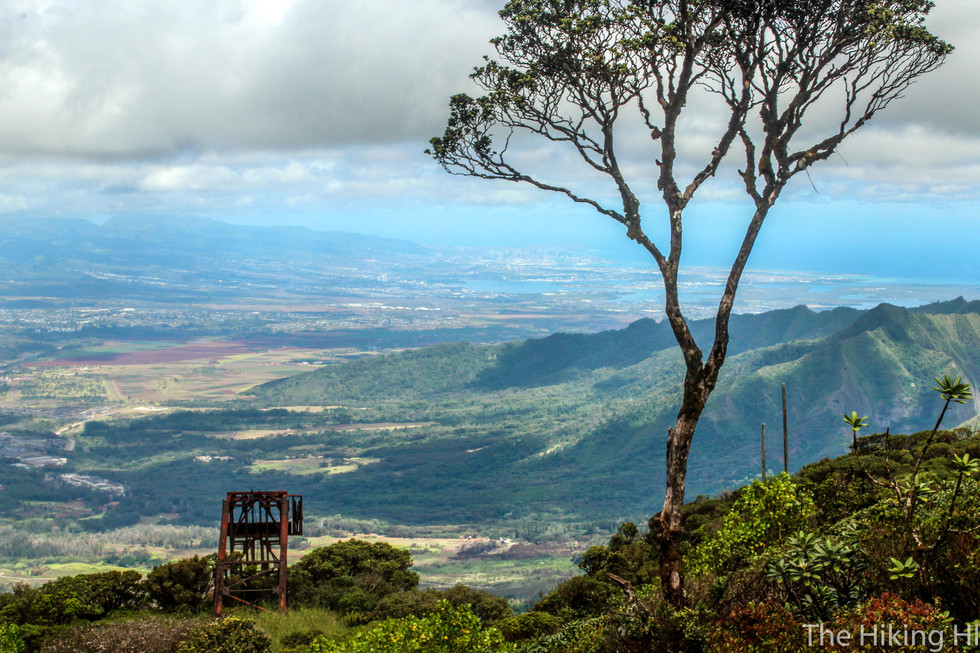 MOUNT KA'ALA: THE HIGHEST PEAK ON OAHU
