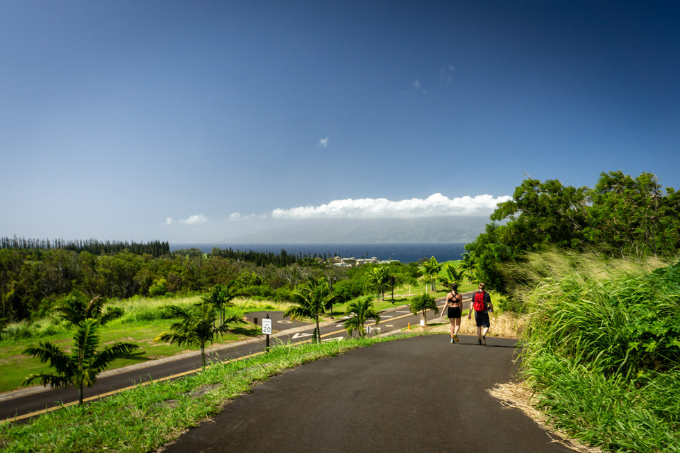 MAHANA RIDGE TRAIL--MAUI