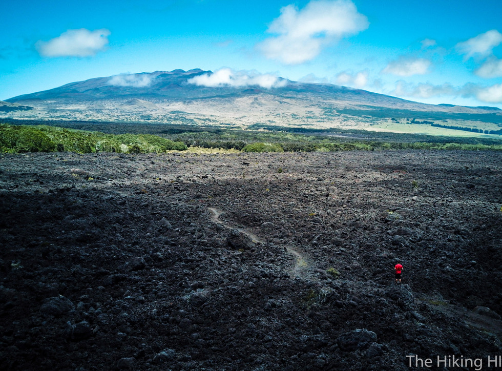Pu'u O'o Trail-- The Big Island