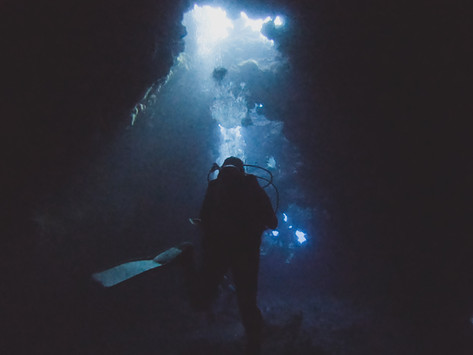 LANAI SCUBA DIVING: FIRST CATHEDRAL
