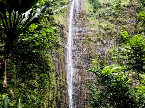 HANA to LAHAINA: A TRIP AROUND MAUI