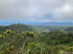 WAIMANO RIDGE TRAIL