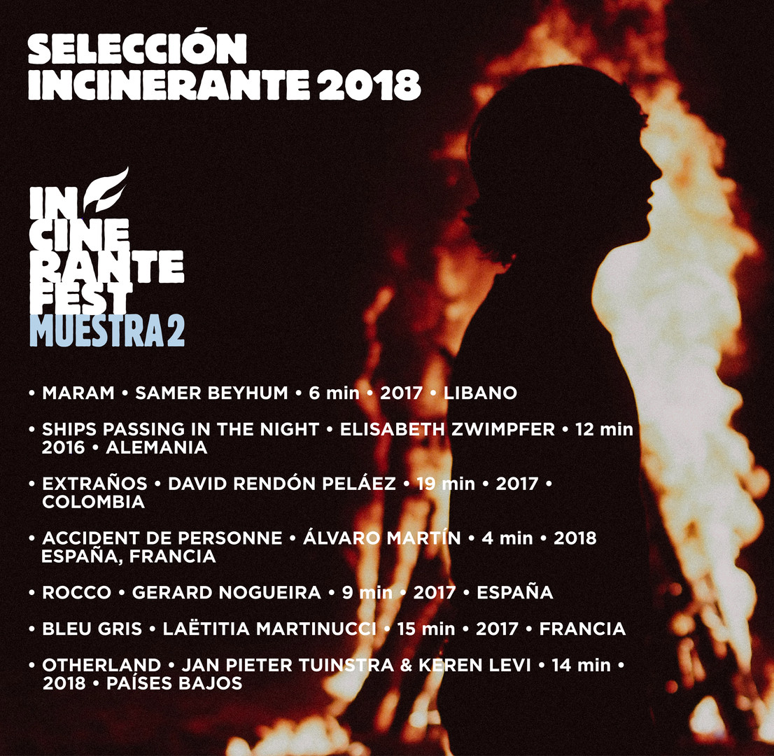 seleccion_postfb_incinerante_2018_m2.jpg