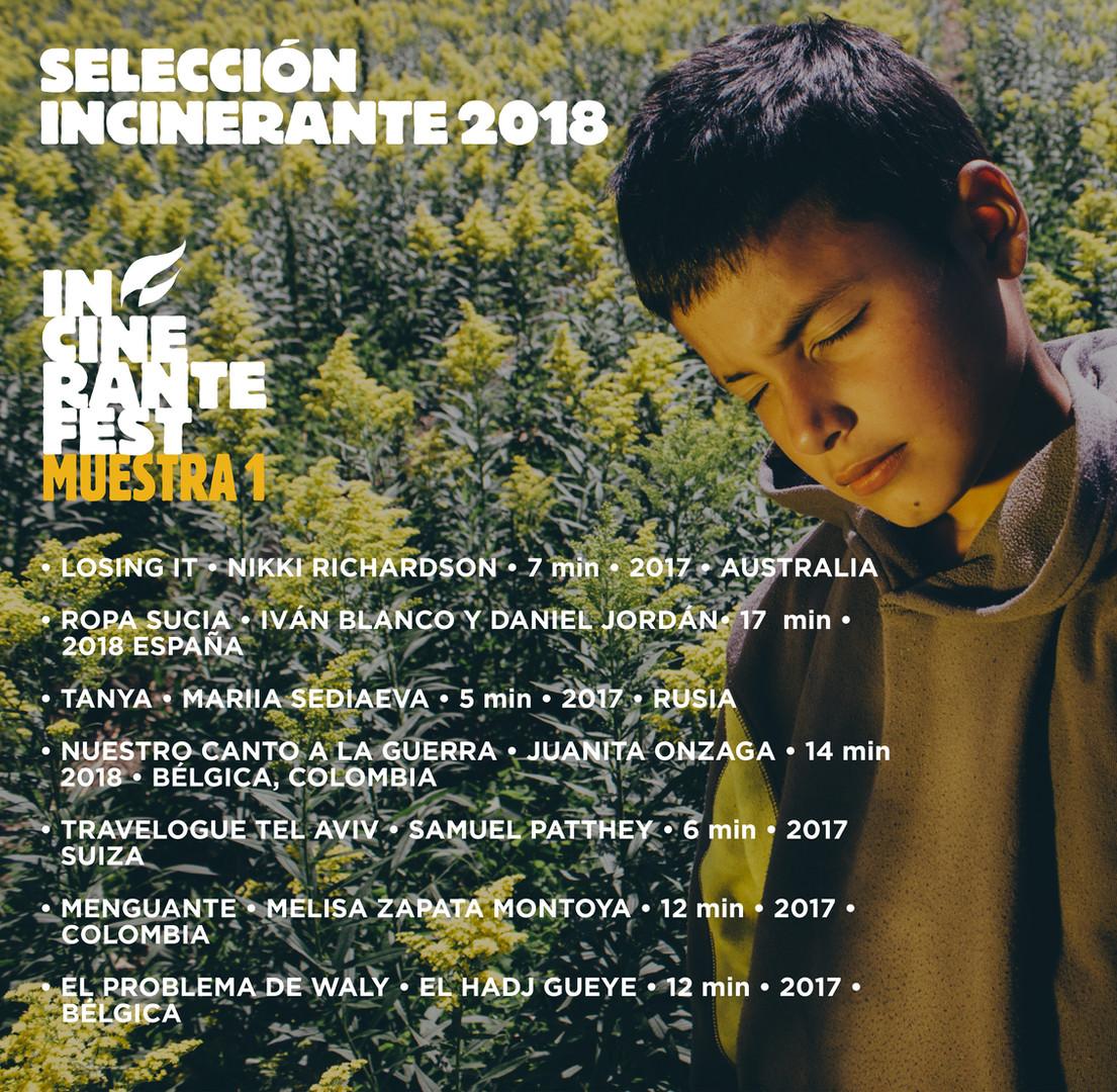 seleccion_postfb_incinerante_2018_m1.jpg
