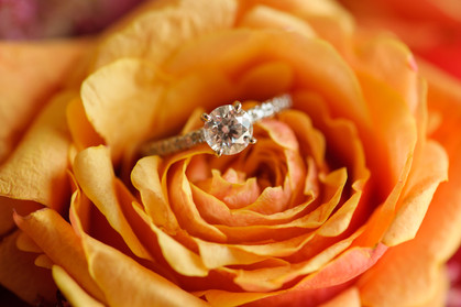 Put a ring on it at the Ripjack Inn in Playa Grande, Costa Rica