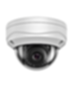 camera dome 305.png