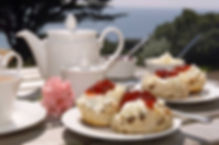 Cream Tea - Regatta Flavel.jpg