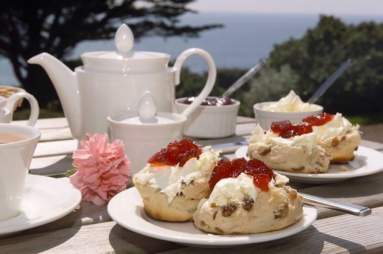 Cream Tea - Regatta Flavel.jpg