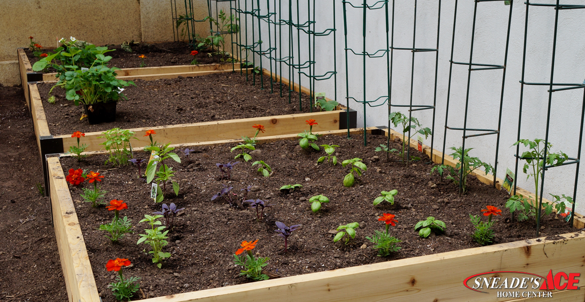 The-Benefits-of-Raised-Garden-Beds-Faceb
