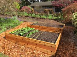 Cedar+Raised+Garden+Bed