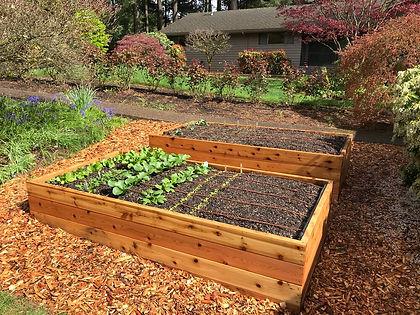 Cedar+Raised+Garden+Bed.jpg