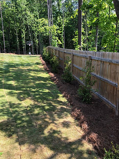 Sod Installation and Privacy Fence
