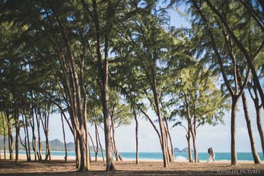 Sherwood beach