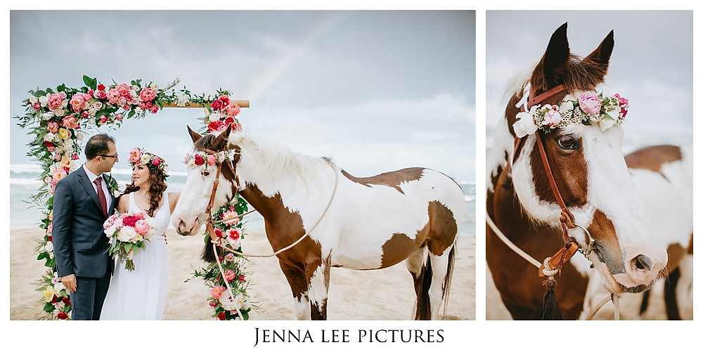 Gorgeous Hawaii Beach Elopement with incredible florals, a haku-wearing-pony and a rainbow on the beach!