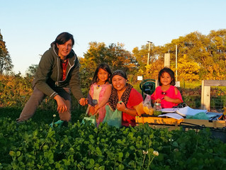 Frogtown Farm: Making Fresh Food Available to Neighbors