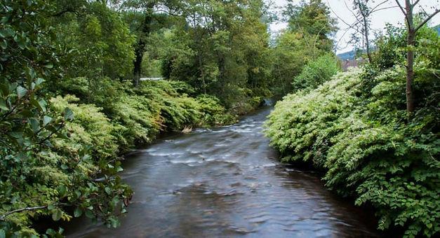 La rivière qui longe le camping