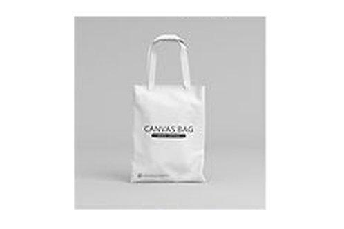 Canvas Handle bag/ Shopping bag