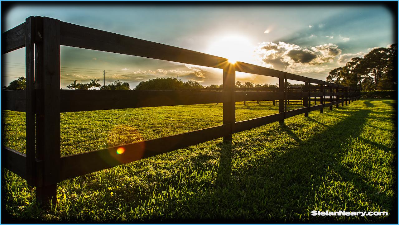 Sunset paddock