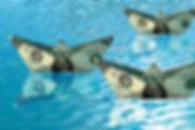 money-floating-on-water.jpg