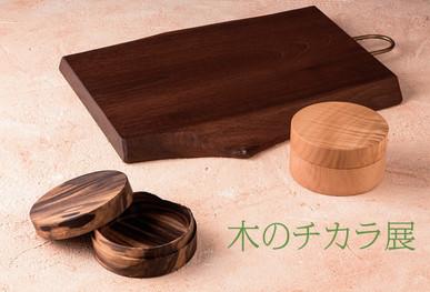 木のチカラ展2020_DM.JPG
