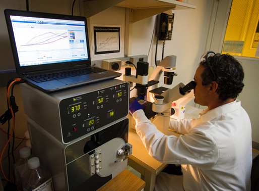 Northwest Bio and Med Tech Companies Go Beyond the Bay
