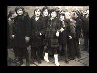 1960s group cow4.jpg