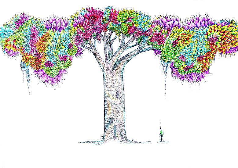 Rākau Aniwaniwa Rainbow Tree