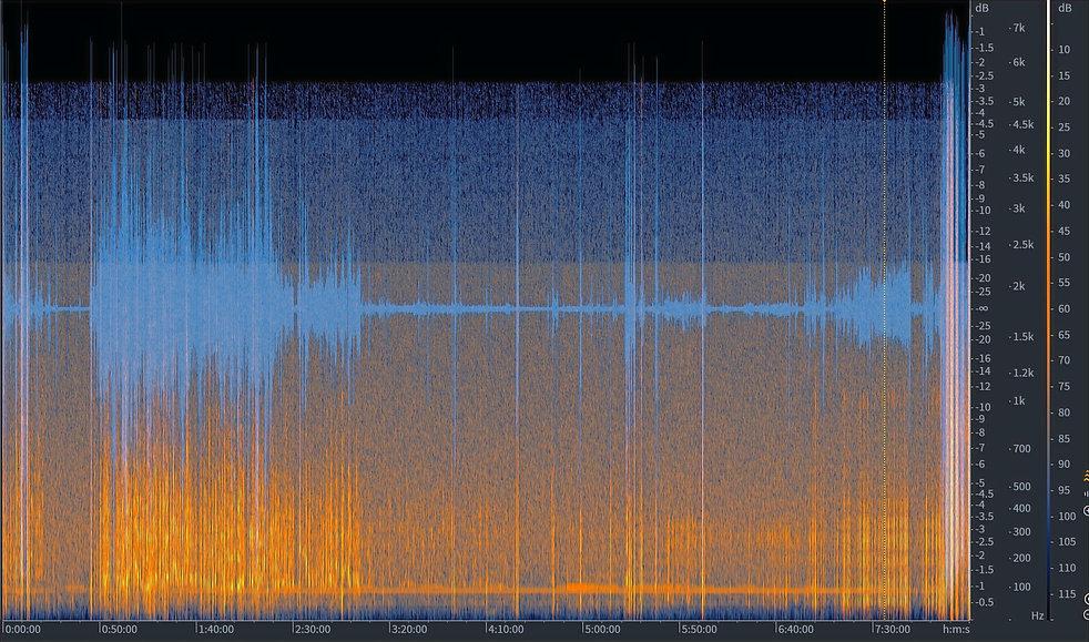 Audio%20Restoration_edited.jpg