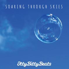Soaring Through Skies