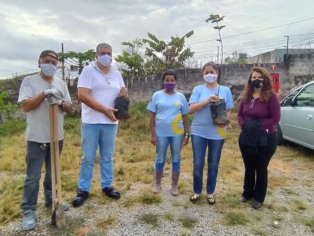 Instituto Helena Antipoff recebe doação e fortalece paisagismo com pau-brasil