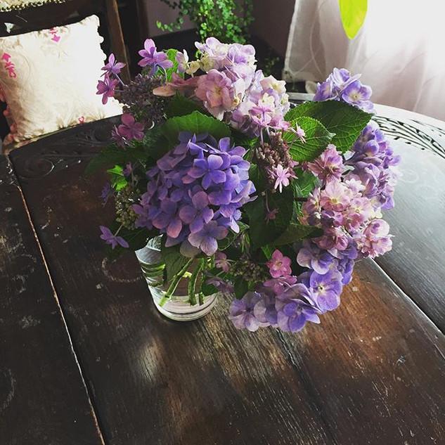 またまた紫陽花を頂きました✨_なんて美しいんだろうか。。_先日、友人と「日本人は