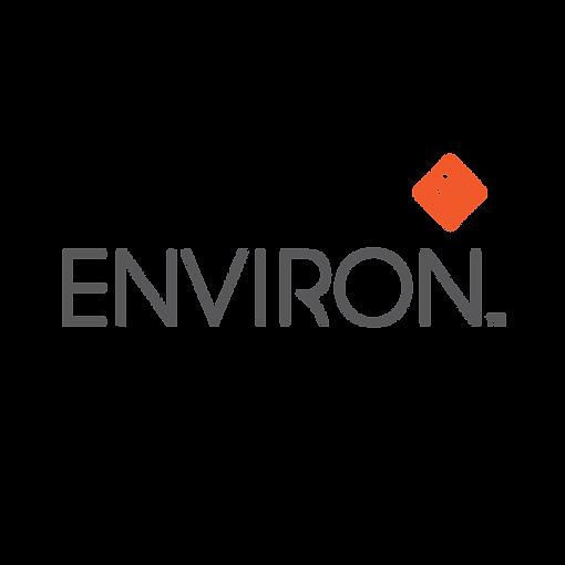 300-ENVIRON.png