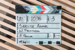 "Director of the award winning short, ""SERVICE ANIMAL"""