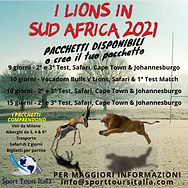 Lions Italiano.jpeg