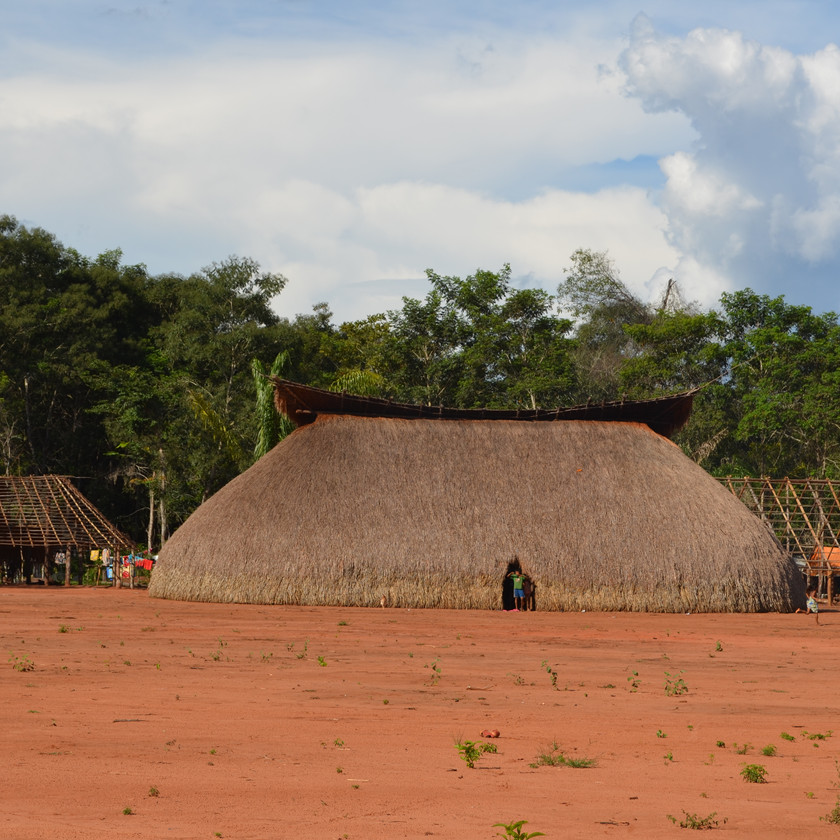 Forest resources such as palm trees are used for building their houses, among many other uses