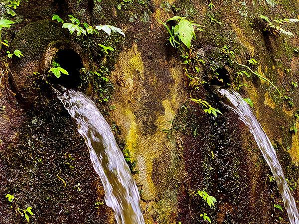 Gunung Kawi _web 12.jpg