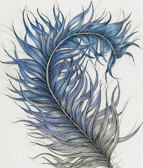 Fine Feathers Zentangle® Zoom Session2-Part Class