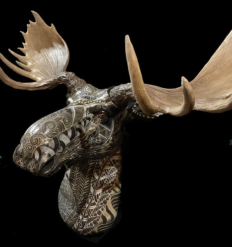 "Tangled Mount ""Morry the Moose"""