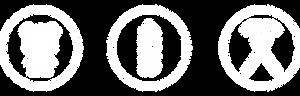brand_logo.png