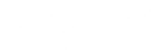 Logo SAARI BLANCO.png