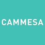 CAMMESA.png