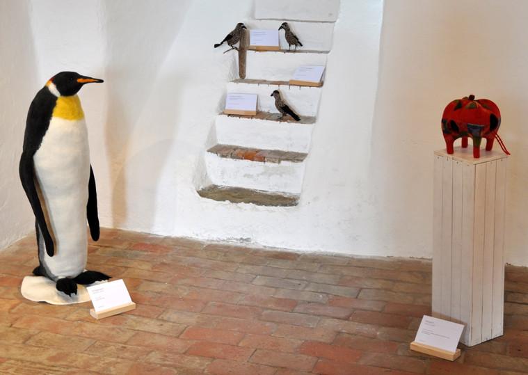 Pinguin Tannenhaeher und ein Refugium